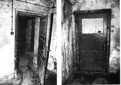 The militant atheist proving the existence of gas chambers - Existence des chambres a gaz ...